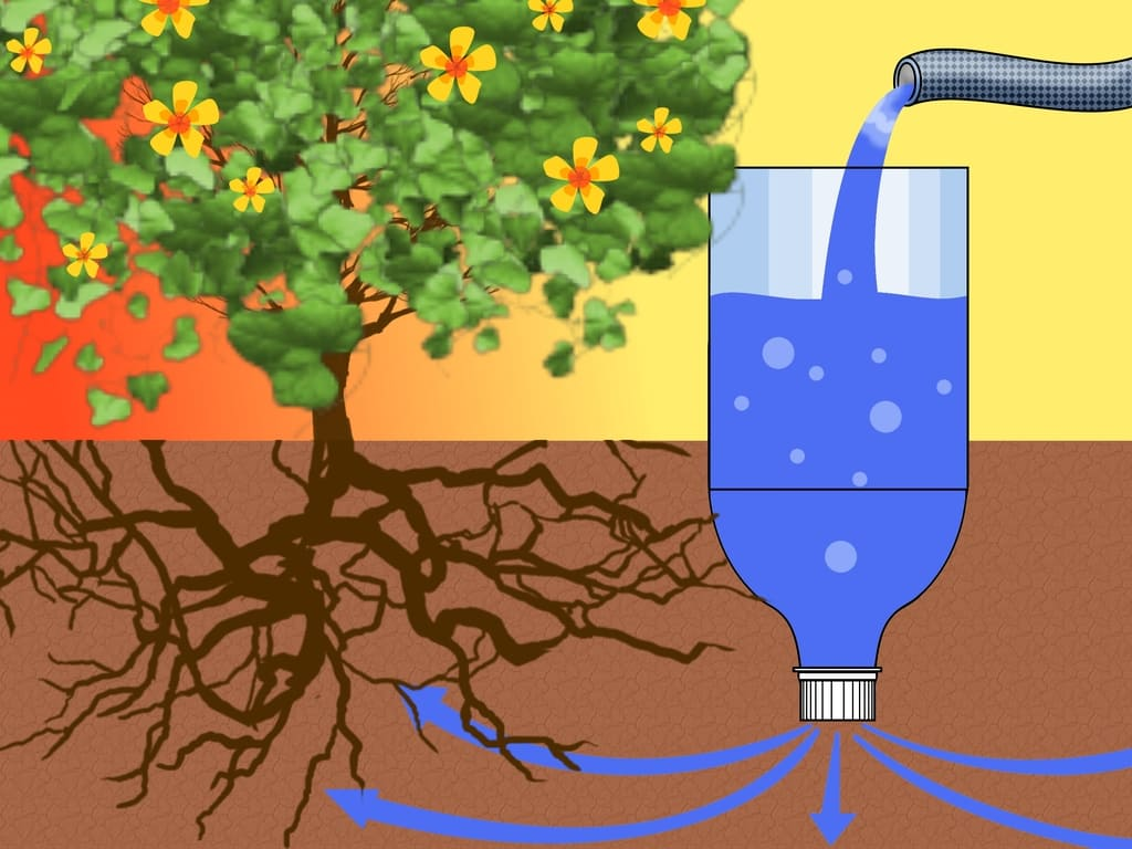 Капельный полив из пластиковой бутылки